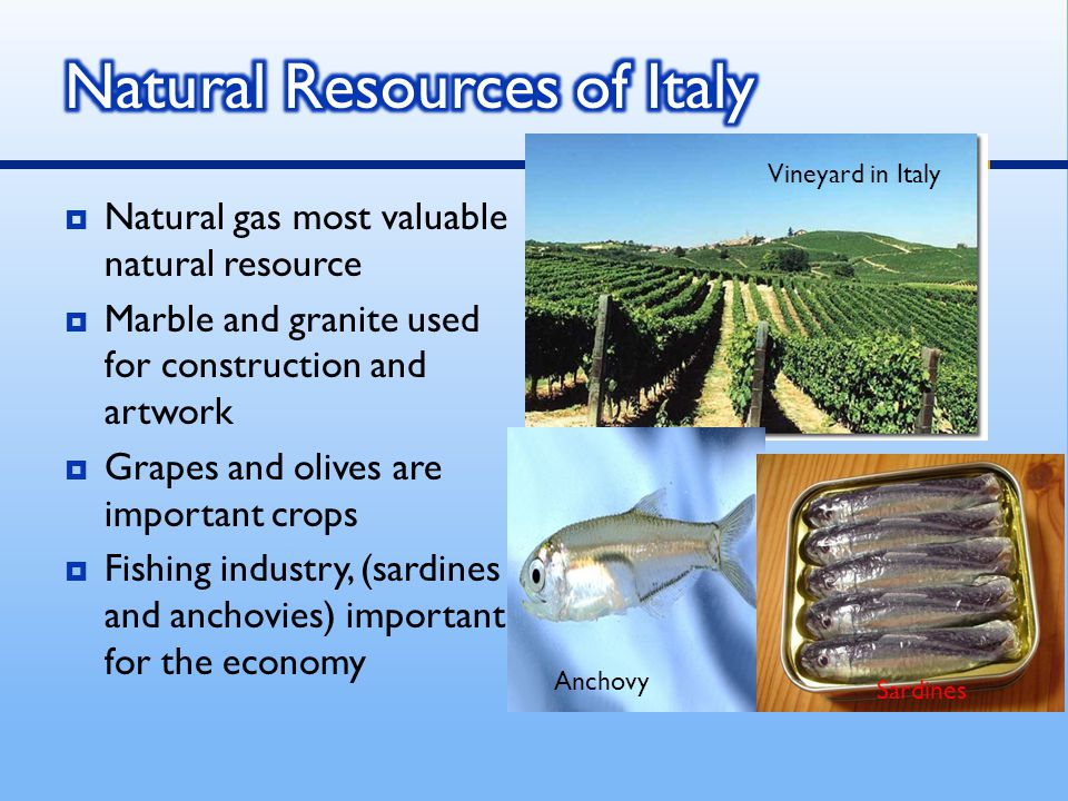 India S Most Important Natural Resources