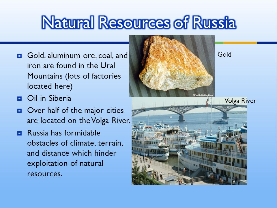 What Are Russia S Most Important Natural Resources