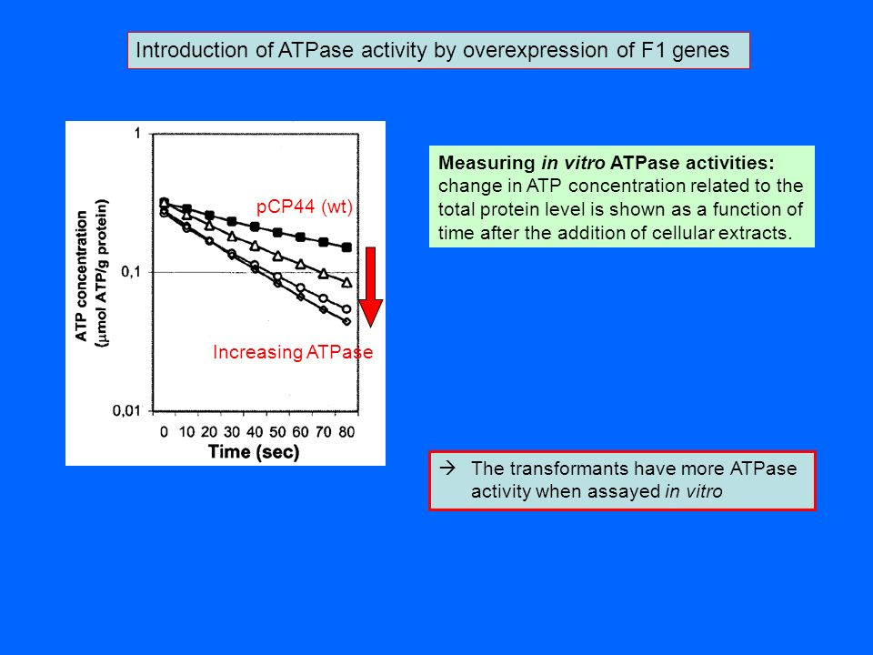 Introduction of ATPase activity by overexpression of F1 genes