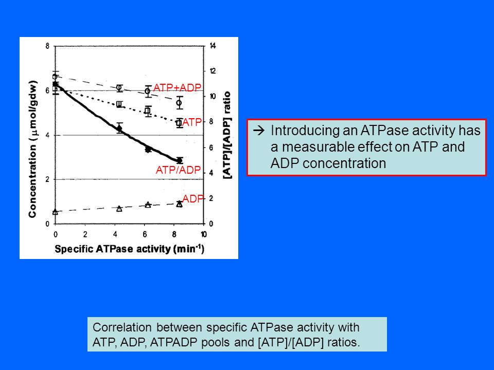 ATPADP. ATP/ADP. ATP+ADP. Introducing an ATPase activity has a measurable effect on ATP and ADP concentration.