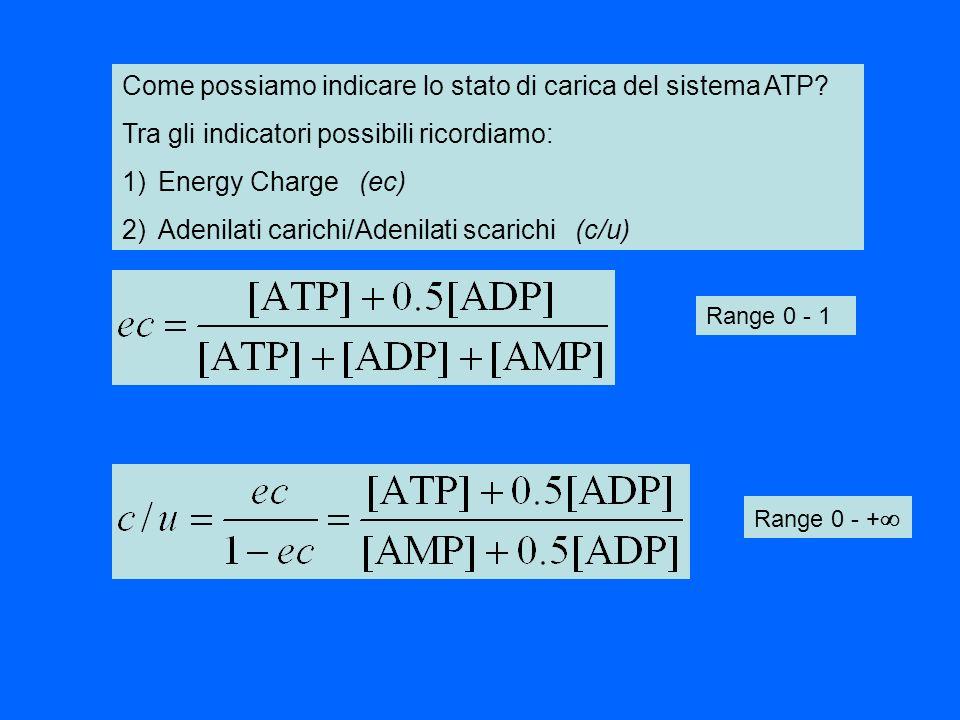 Come possiamo indicare lo stato di carica del sistema ATP