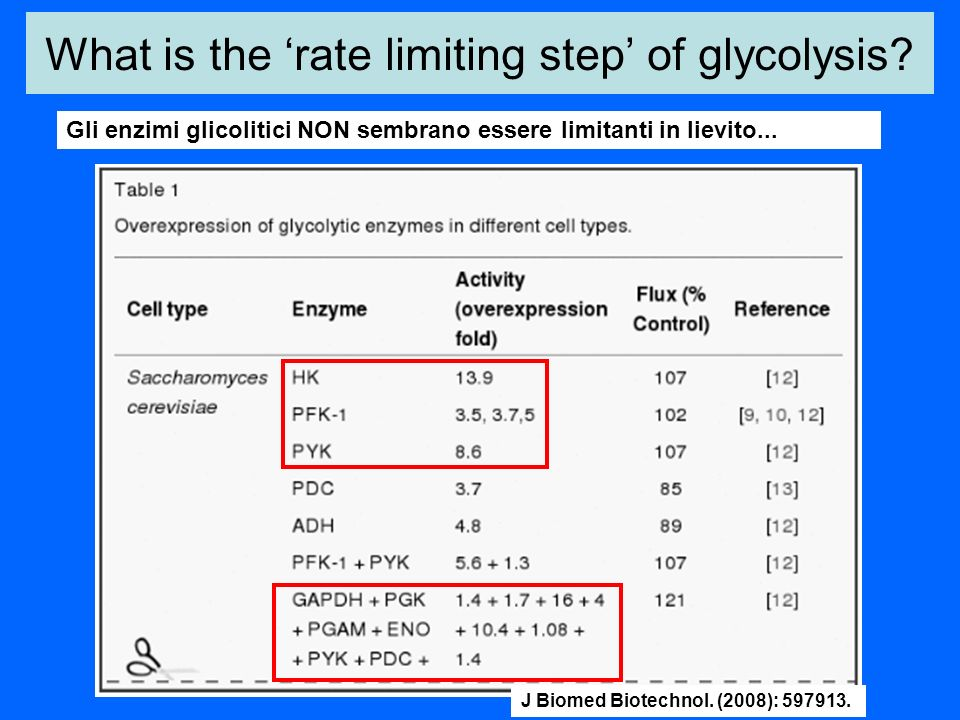 What is the 'rate limiting step' of glycolysis