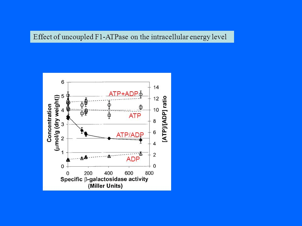 Effect of uncoupled F1-ATPase on the intracellular energy level