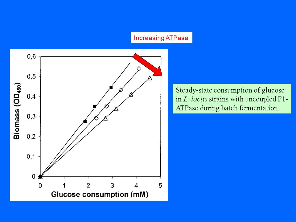 Increasing ATPaseSteady-state consumption of glucose in L.