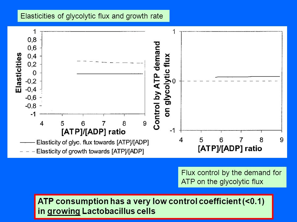 Elasticities of glycolytic flux and growth rate