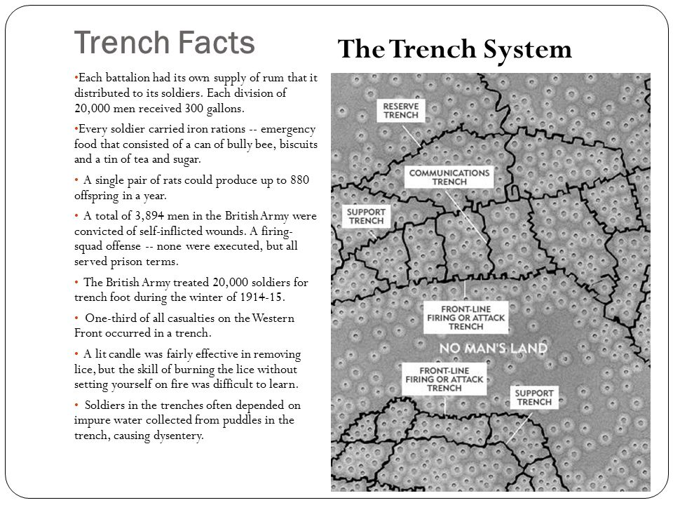 trench foot and trench rats during 8 dysentery dysentery is a disease of the digestive system caused by the  consumption of bacteria in food and water (bacteria from fecal material)  remember.