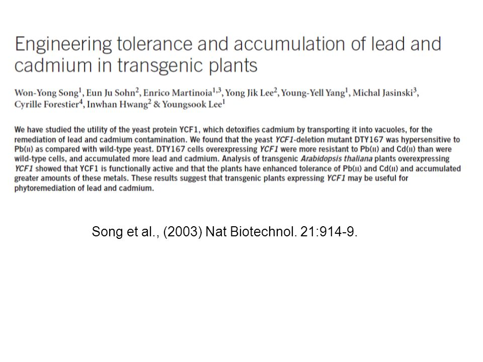 Song et al., (2003) Nat Biotechnol. 21:914-9.