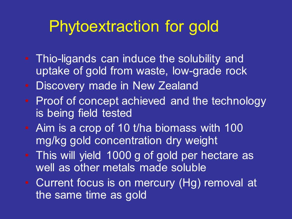 Phytoextraction for gold