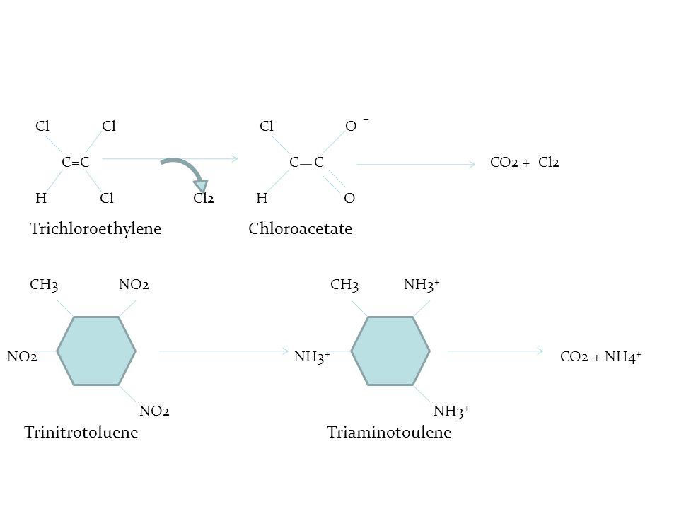 - Trichloroethylene Chloroacetate Trinitrotoluene Triaminotoulene