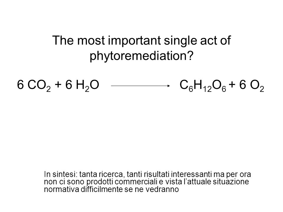The most important single act of phytoremediation