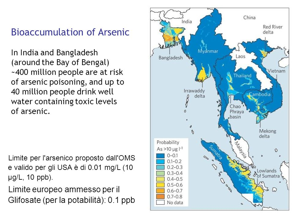 Bioaccumulation of Arsenic