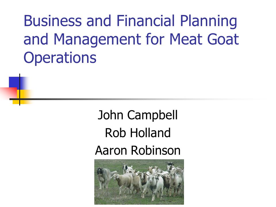 Goat Farming Business Plan | Profit | Basics And Information