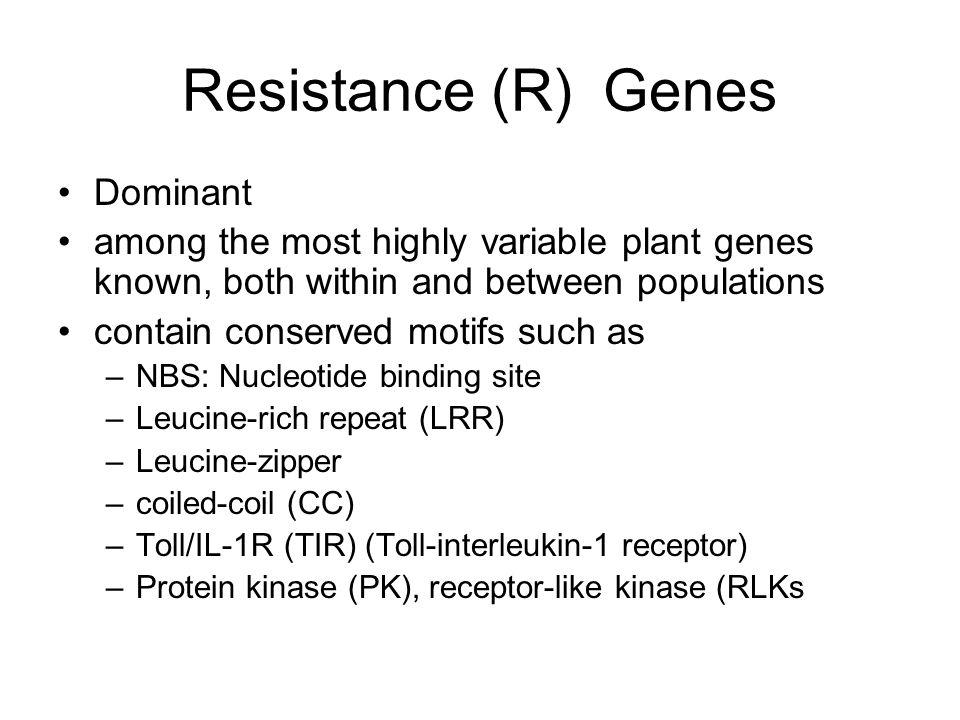 Resistance (R) Genes Dominant