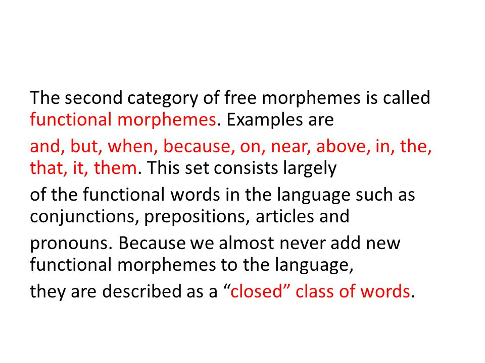 The second category of free morphemes is called functional morphemes