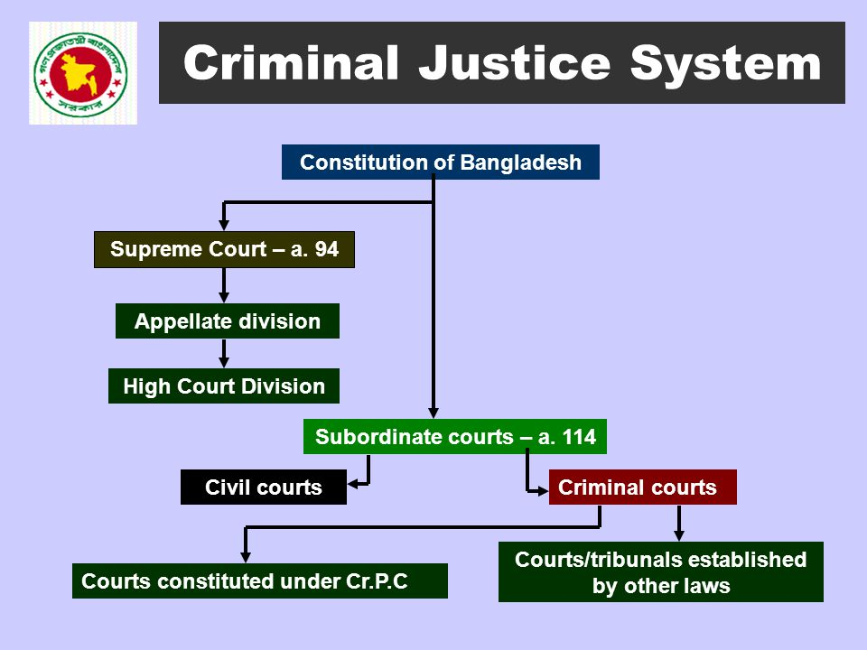 a comparison of the criminal justice system and the civil law system What america can learn from germany's justice system a clear example of how a civil justice system can review, in comparison to its german.