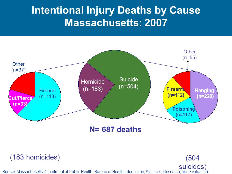 Intentional Injury Deaths by Cause Massachusetts: 2007