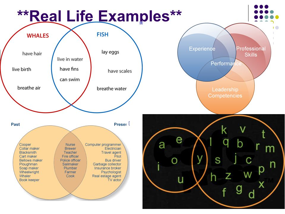 Venn diagrams ppt video online download 3 real life examples ccuart Gallery