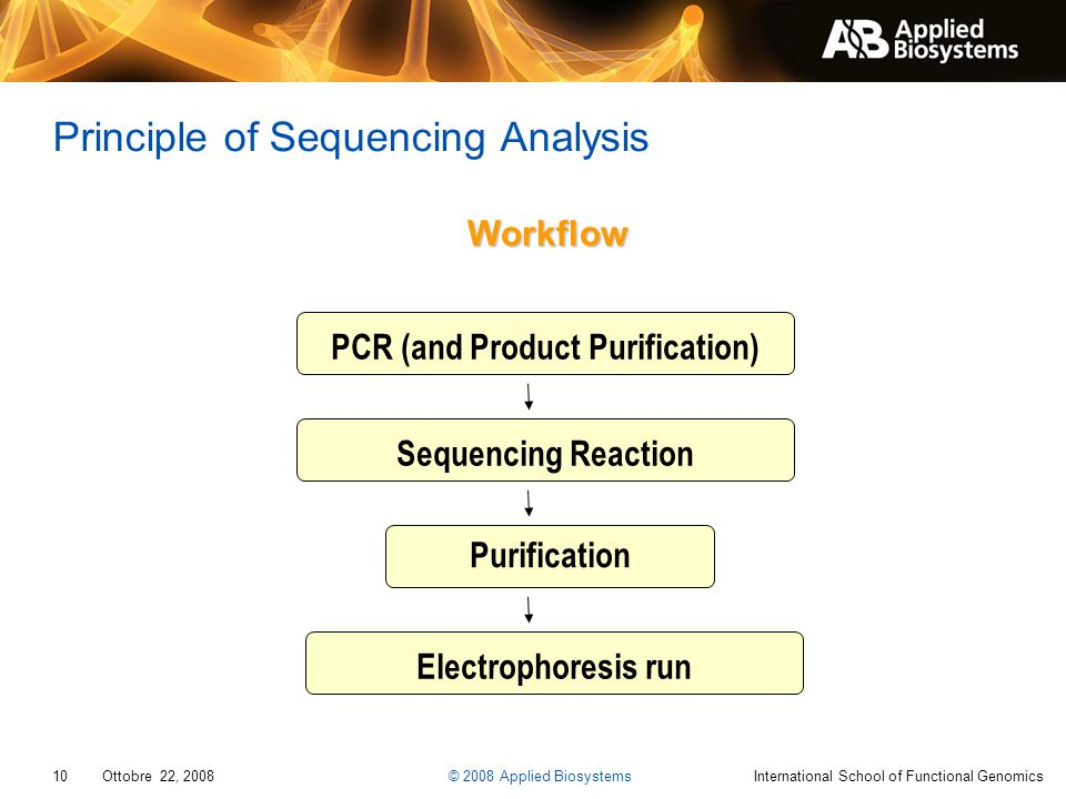 Principle of Sequencing Analysis