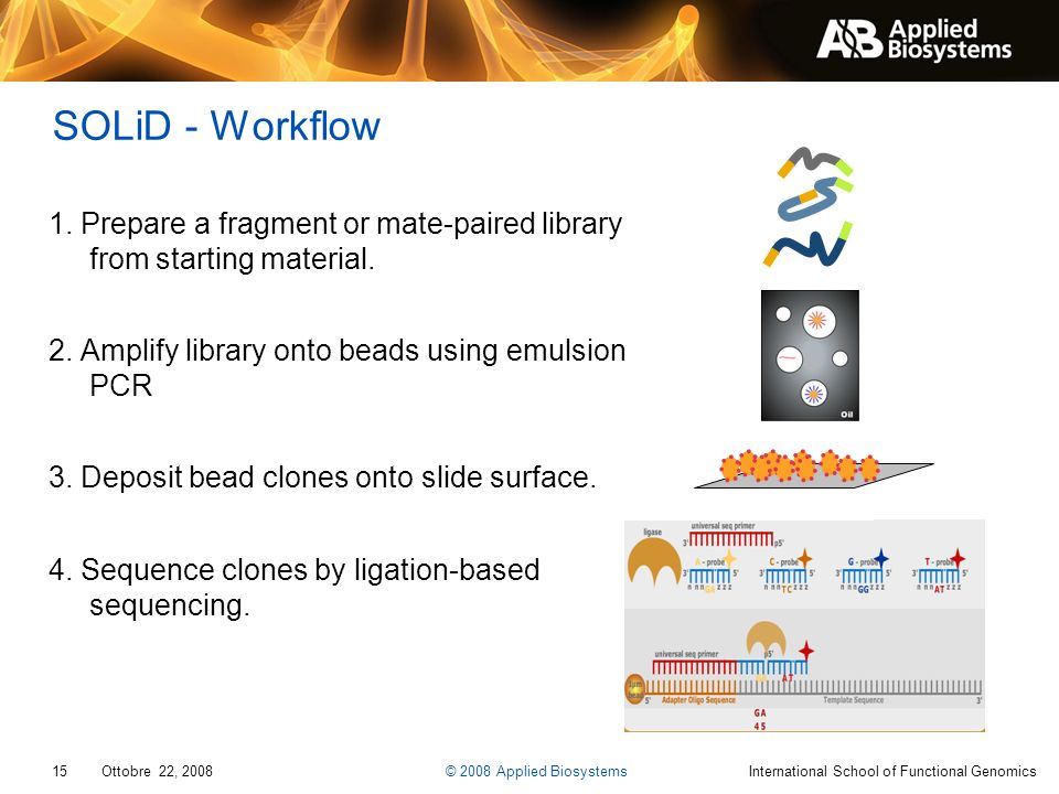 SOLiD - Workflow 1. Prepare a fragment or mate-paired library from starting material. 2. Amplify library onto beads using emulsion PCR.