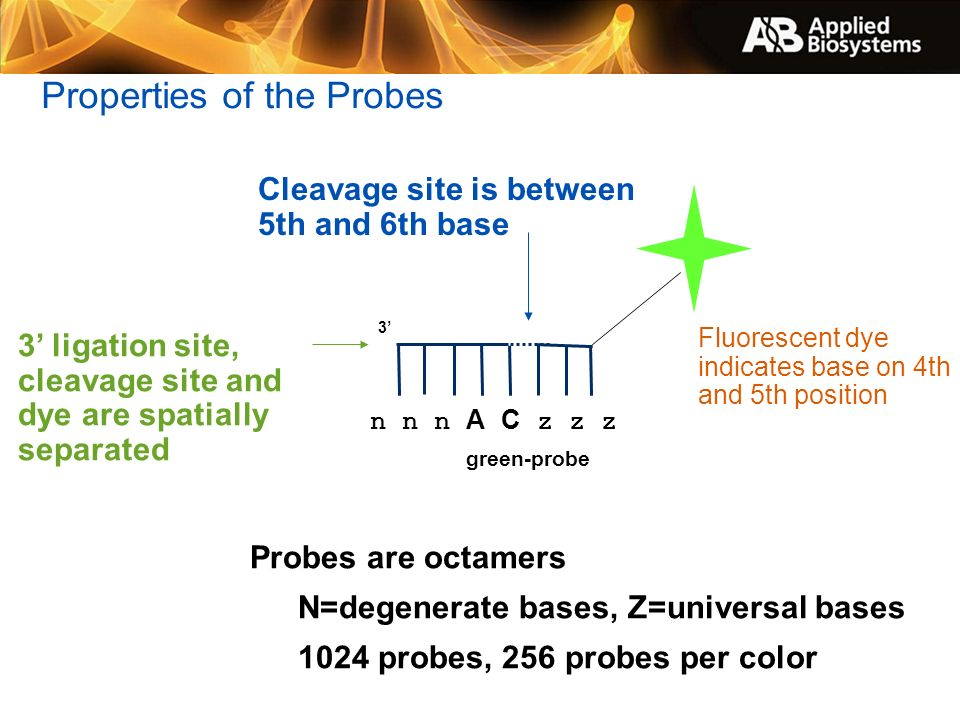 Properties of the Probes
