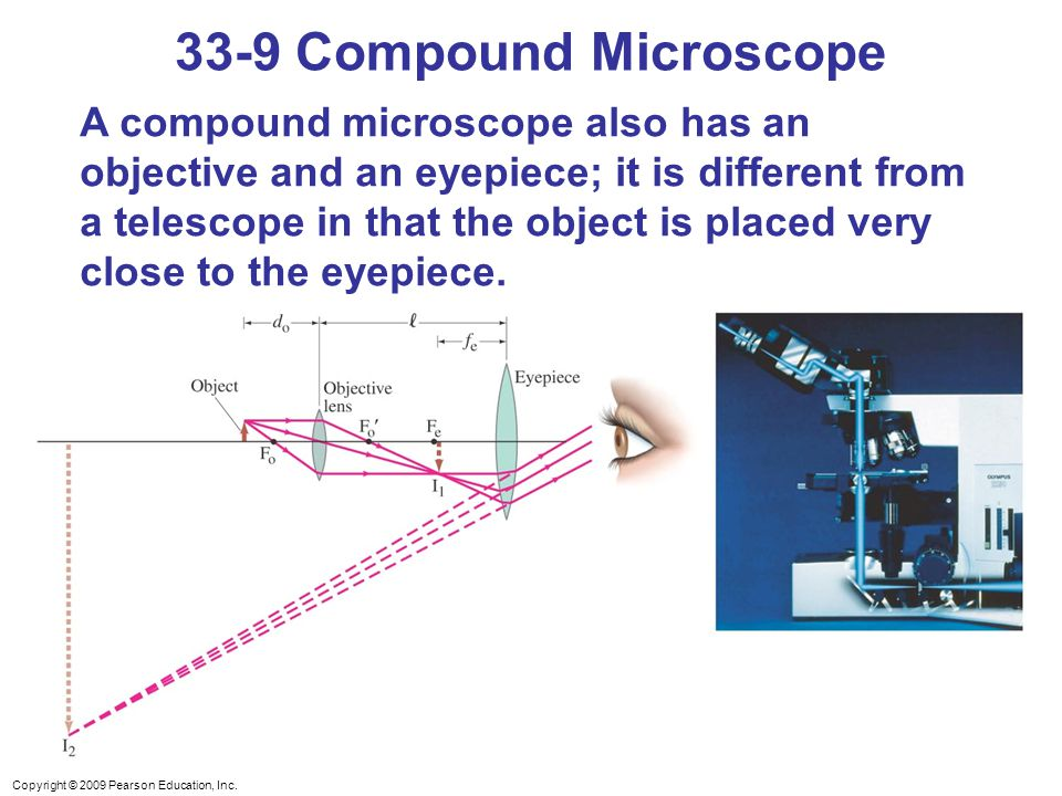 Chapter 33 lenses and optical instruments ppt video online download 33 9 compound microscope ccuart Gallery