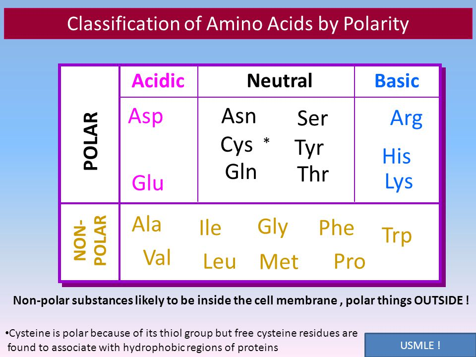 amino acid and protein chemistry ppt video online download