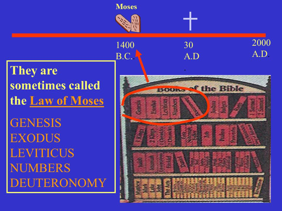 They are sometimes called the Law of Moses