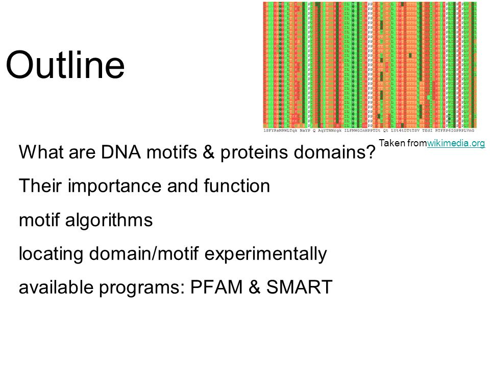 protein motifs and domains pdf