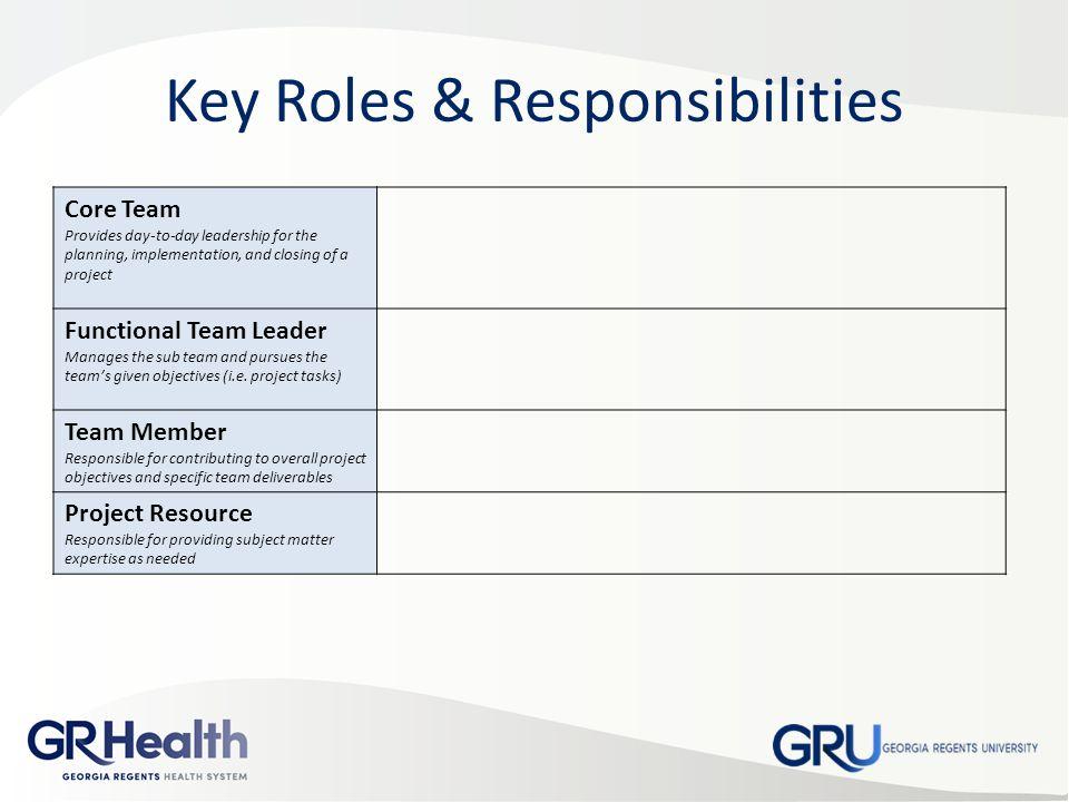 Project Organization Chart Roles & Responsibilities Matrix - ppt ...