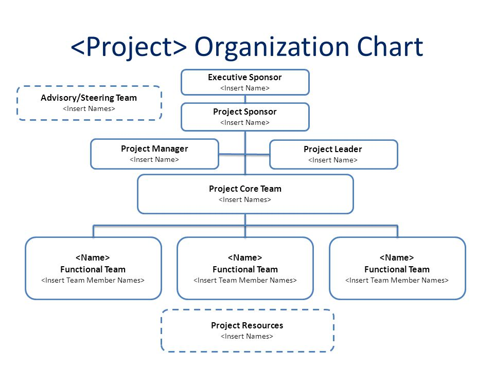 Project Organization Chart Filename ProjectOrganizationalChart