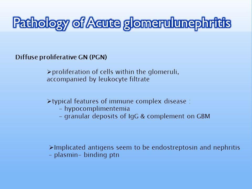 Pathology of Acute glomerulunephritis
