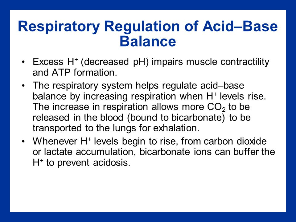 exercise 10 acid base balance Name: rebecca palacios exercise 10: acid-base balance: activity 1:  hyperventilation lab report pre-lab quiz results you scored 100% by  answering 4 out of.