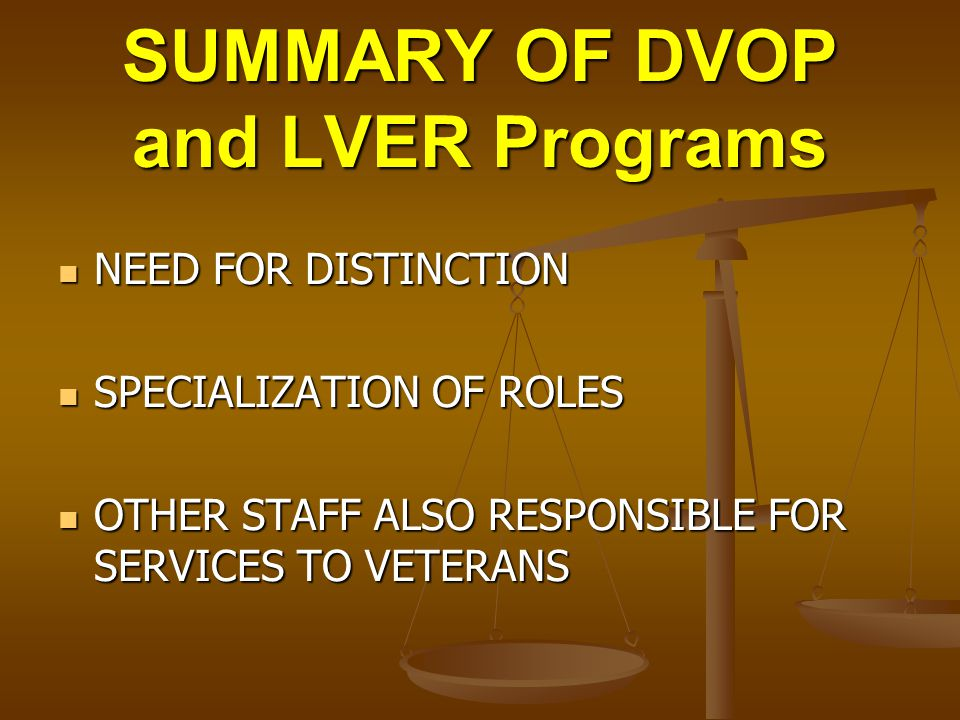 SUMMARY OF DVOP and LVER Programs