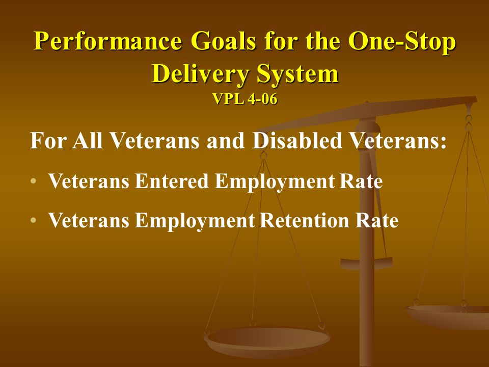 Performance Goals for the One-Stop Delivery System