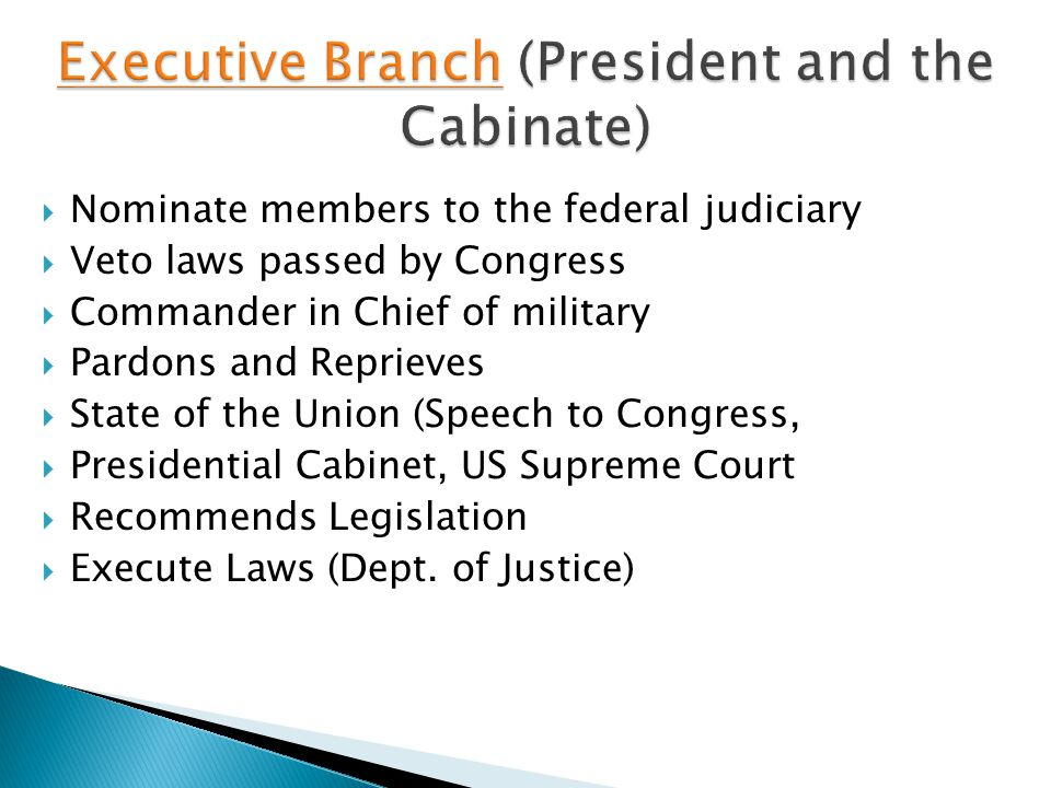 Executive Branch (President and the Cabinate)