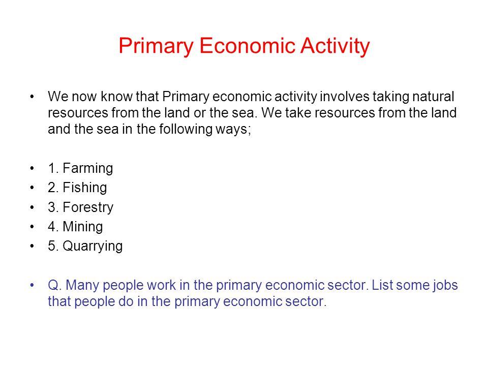 Primary Economic Activity