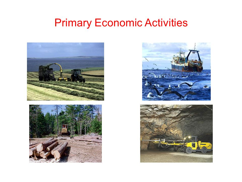 Primary Economic Activity - ppt video online download