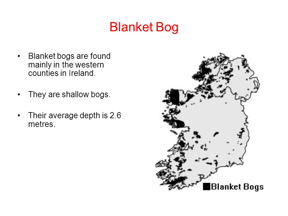 Blanket Bog Blanket bogs are found mainly in the western counties in Ireland. They are shallow bogs.