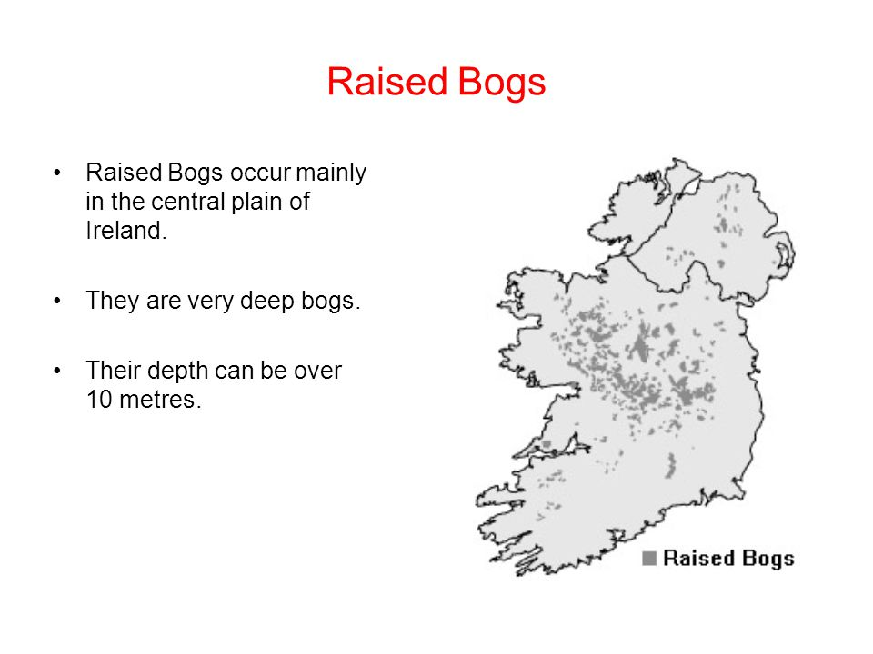 Raised Bogs Raised Bogs occur mainly in the central plain of Ireland.