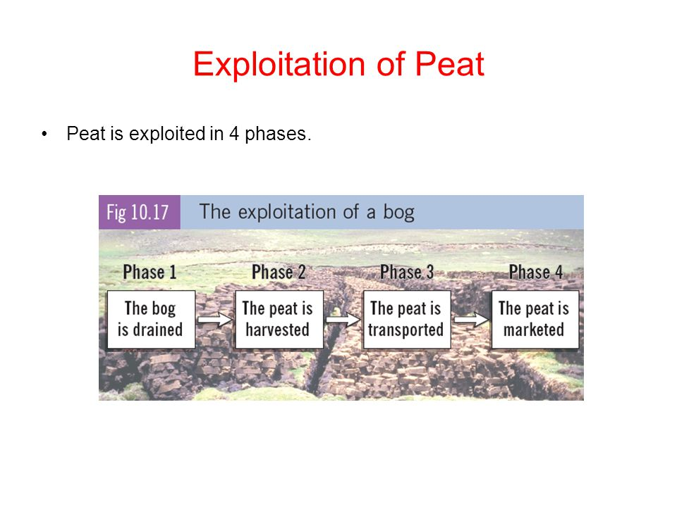 Exploitation of Peat Peat is exploited in 4 phases.