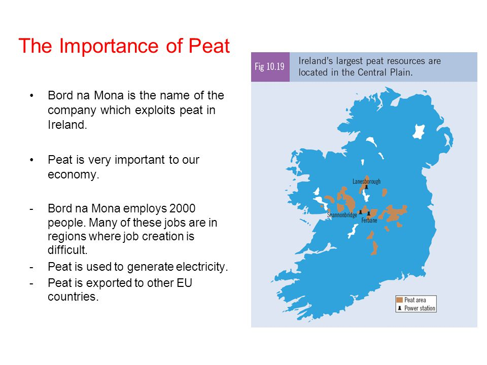 The Importance of Peat Bord na Mona is the name of the company which exploits peat in Ireland. Peat is very important to our economy.