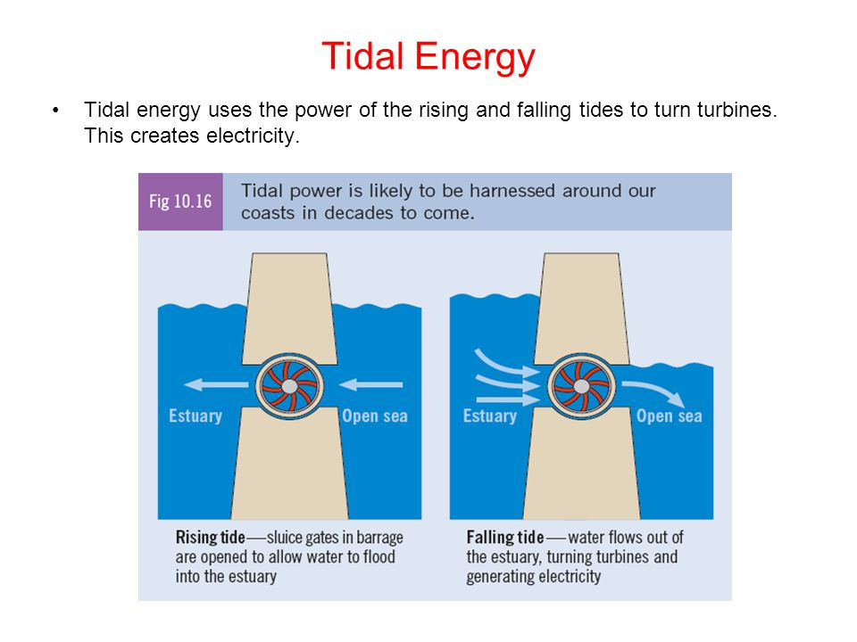 Tidal Energy Tidal energy uses the power of the rising and falling tides to turn turbines.