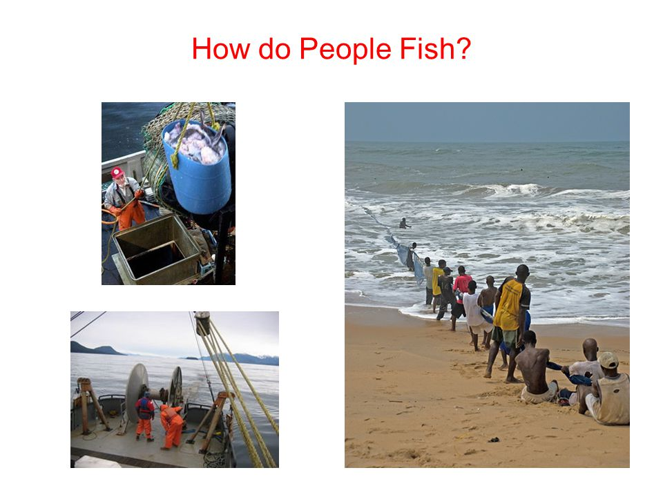 How do People Fish