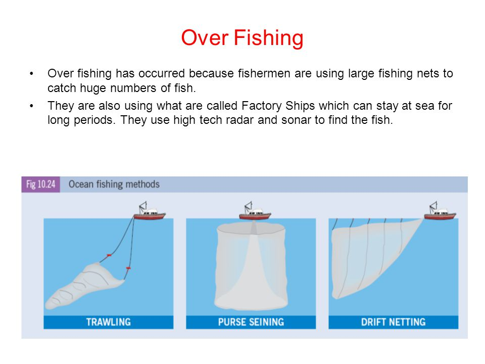 Over Fishing Over fishing has occurred because fishermen are using large fishing nets to catch huge numbers of fish.