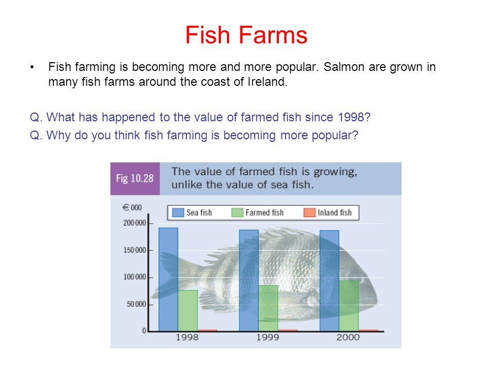 Fish Farms Fish farming is becoming more and more popular. Salmon are grown in many fish farms around the coast of Ireland.