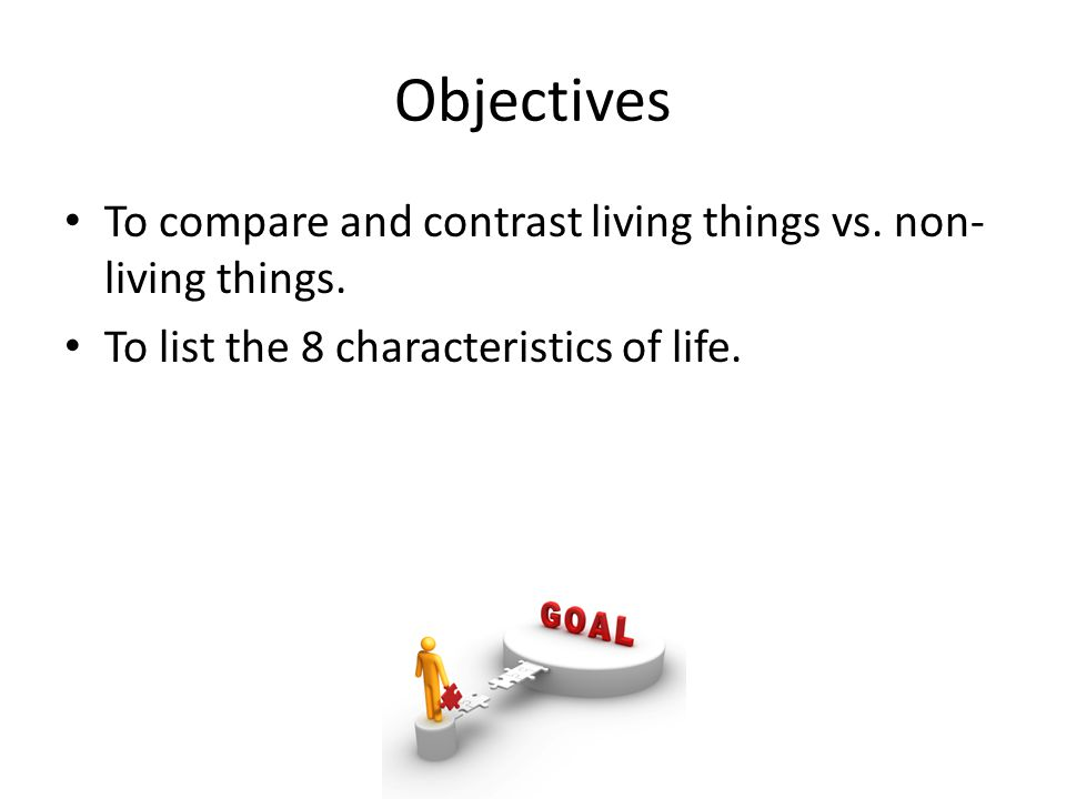 Compare And Contrast Chocolat Vs Things Finding Interesting Compare  Contrast Essay Topic Ideas