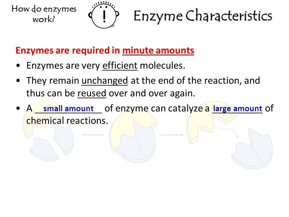 Enzyme Characteristics