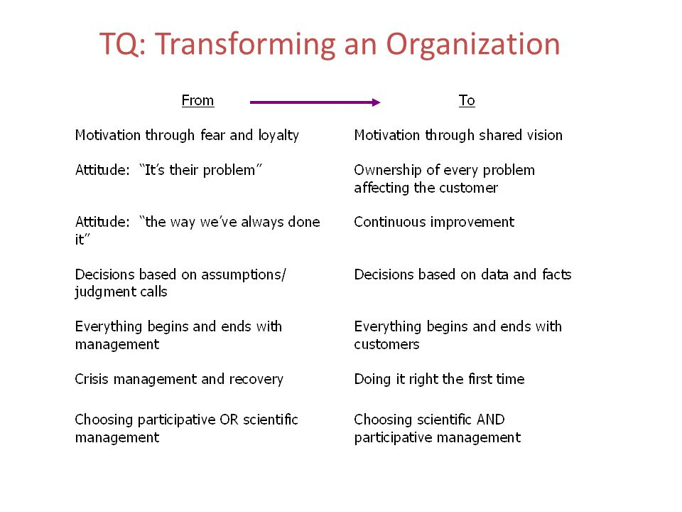 TQ: Transforming an Organization