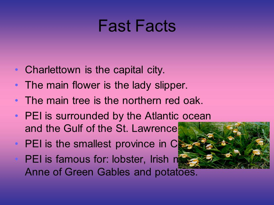 """Prince Edward Island """"…the small under the protection of the great - ppt video online download"""