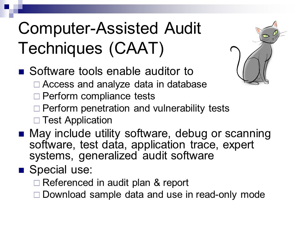 Procedures Of Is Audit Advances In Is Audit Ppt Download